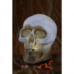 Caveira Crânio com Luz Família Addams