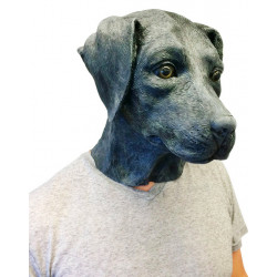 Máscara de Cachorro Labrador Vinil Animal Luxo