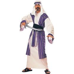 Fantasia Prince Arabe do Deserto Adulto Luxo