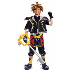 Fantasia Kingdom Hearts Sora deluxe Infantil