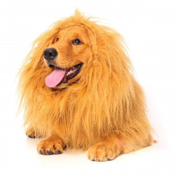 Peruca de Leão para Animais
