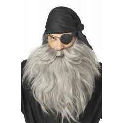 Barba e Bigode Cinza Adulto