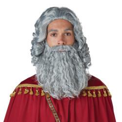 Barba e Peruca de Moisés Adulto Cinza